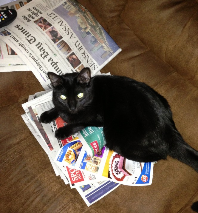 Moosh prefers to read his news in print rather than over the interwebz.