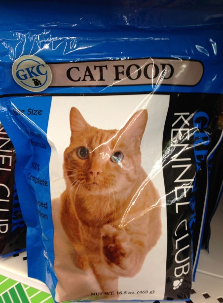 This is just weird. It looks like the cat is trying to escape the bag.