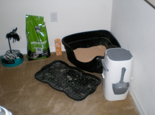"The boyfriend's FAVORITE decoration...the litter box in the ""dining"" area."