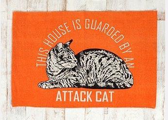 Scaredy cat, more like it.