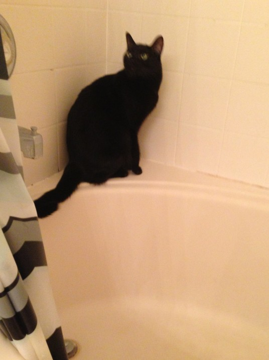 Why are you in the shower? What's wrong with you?